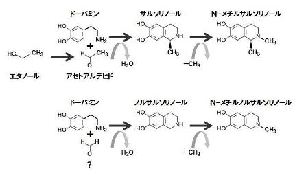 葉酸-16