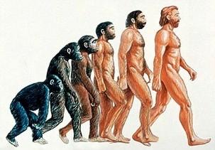 人類の進化-1