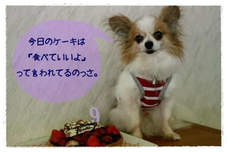 IMG_5123-01.jpg