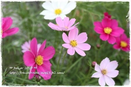 IMG_6054-112.jpg