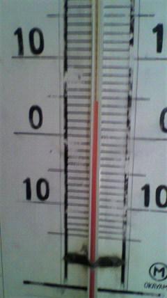 11.3気温