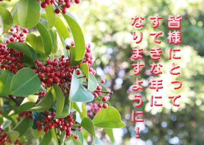 IMG_3306.jpg