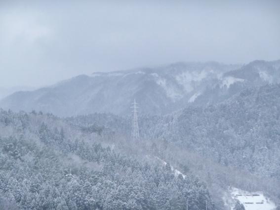0113山