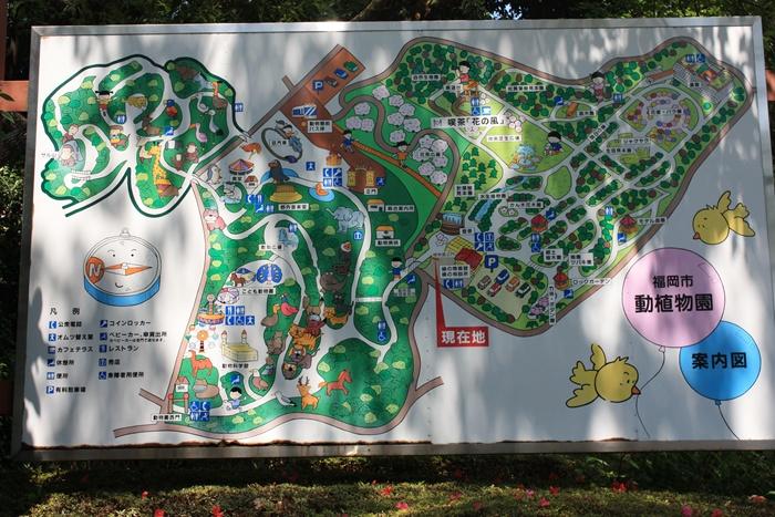 動植物園案内図