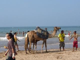 モロッコ海