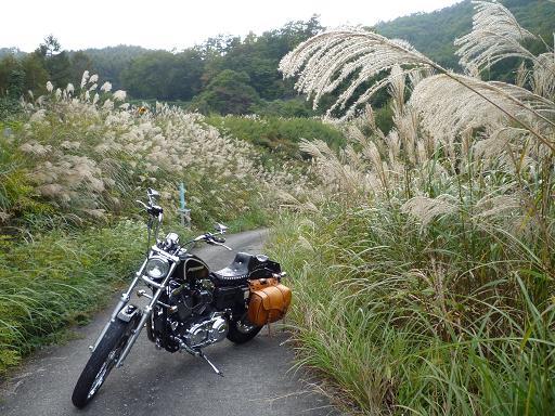 2010_1019戸田別館 0007