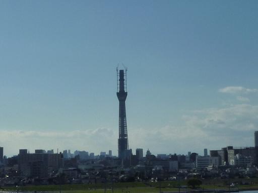 2010_1104戸田別館 0005