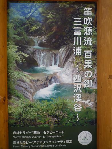 2010_1107戸田別館 0010