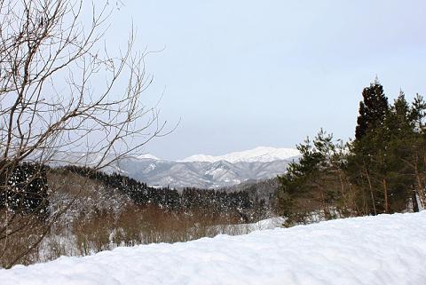 2010-01-09-1.jpg