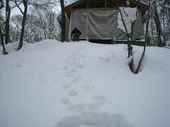 2010-01-09-3.jpg