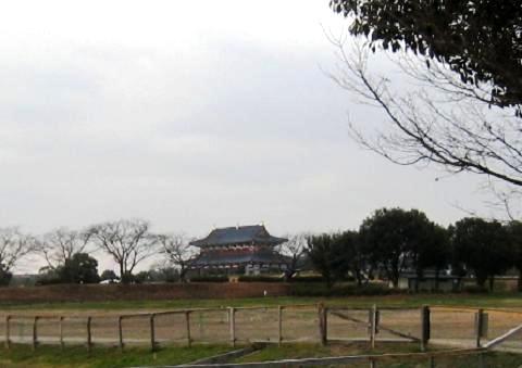 2010-01-23-10.jpg