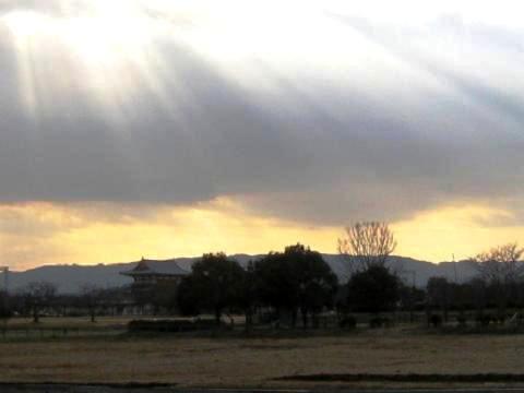 2010-01-23-11.jpg