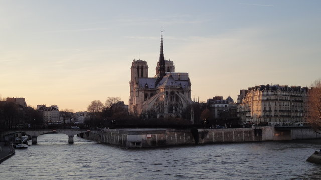 セーヌ川、シテ島、パリのノートルダム大聖堂の夕暮れ