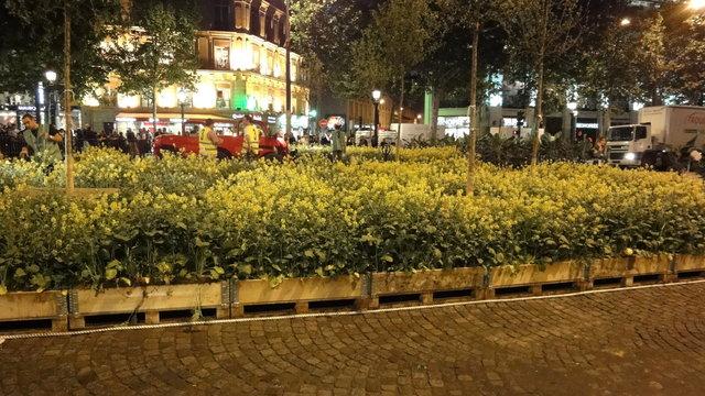 シャンゼリゼ通りにお花畑:「Nature Capitale」