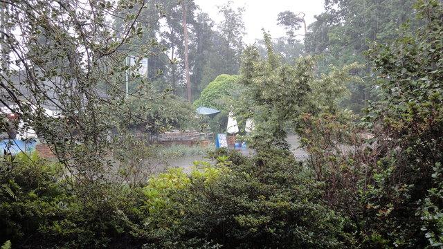 パリ花公園:俄雨