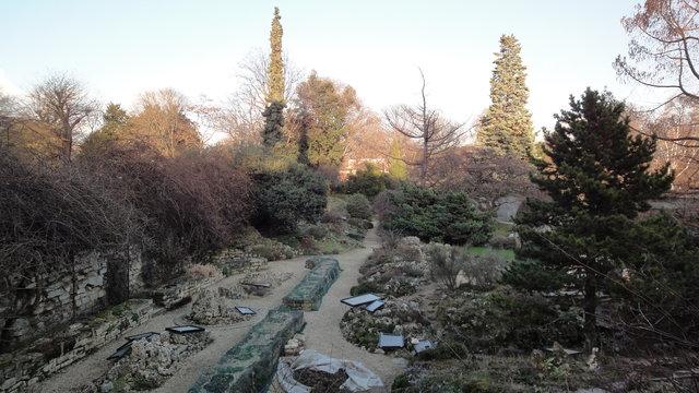 冬のパリ植物園に(国立自然史博物館)