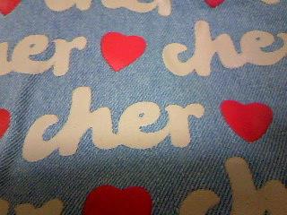 Cher15th_05