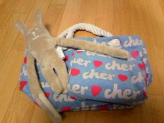 Cher15th_15