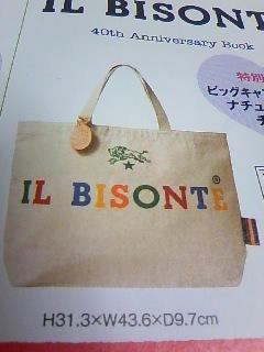 ILBISONTE40thyokoku_02