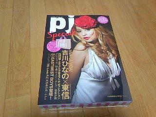 pj2010spring_01