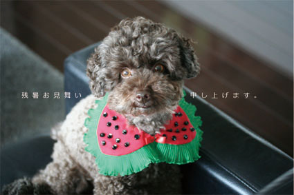 fusuya_100830_1.jpg