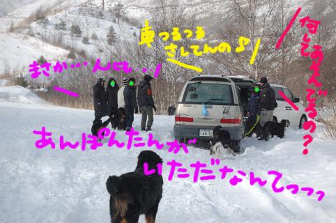 himitsu14.jpg