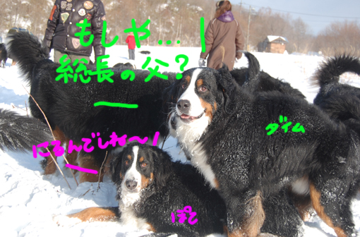 himitsu15.jpg
