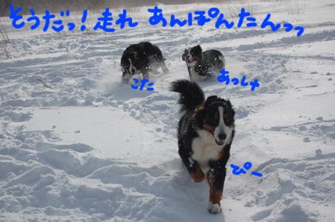himitsu3.jpg