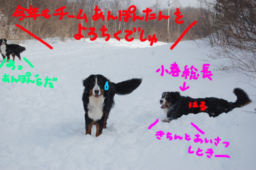 himitsu4.jpg