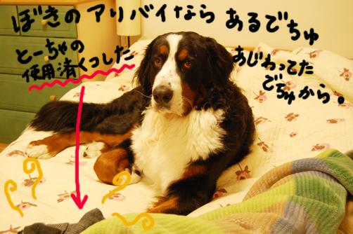 shiyouzumi.jpg