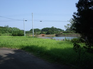 20090819-10.jpg