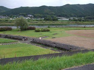 20090922-10.jpg