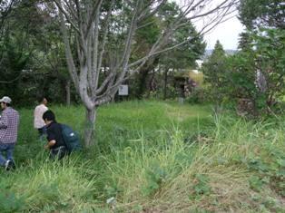 20090922-7.jpg