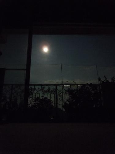 月 ブログ