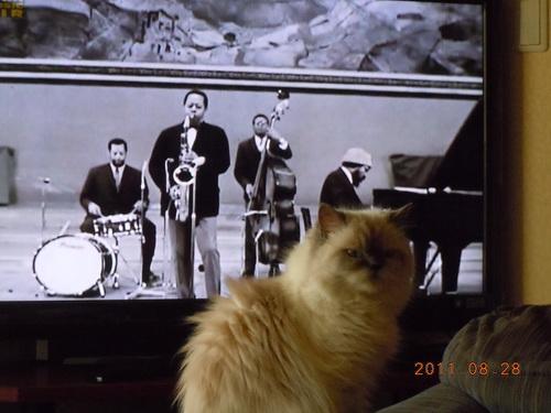ジャズにうっとり