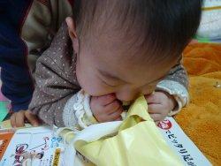 紙食い虫2