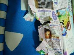 紙食い虫4
