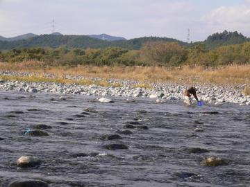 カジカ釣り⑦ (2)