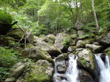 那須の渓2 (2)