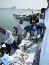 fish market 2