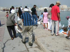 Doha Bay Fish Market 13