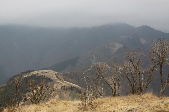 塔ノ岳は雲の中・・・