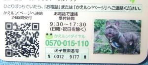 2010-05-30 20-27-21_06