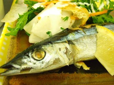 091208 焼き秋刀魚DSCF2886