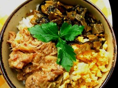 091229 鶏味噌高菜丼DSCF3117