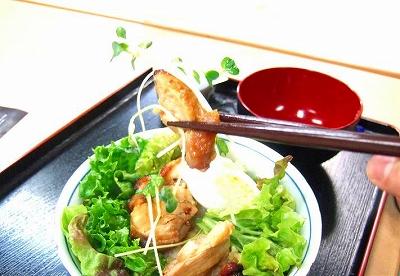 100108 鶏の照り焼き丼DSCF3224