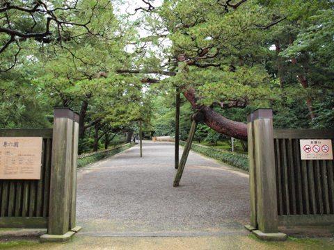 枝が重たい...(2009.08.10)