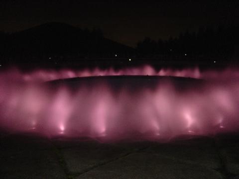 ピンクの噴水(2009.08.15)