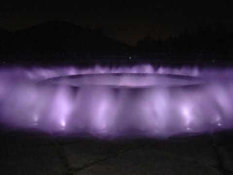 紫の噴水(2009.08.15)