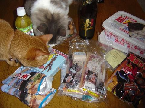 くまくまさん01(2009.08.21)